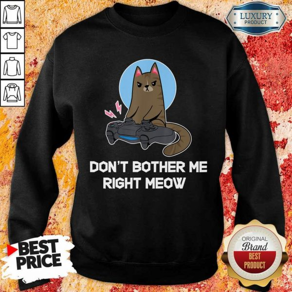 Funny Do Not Bother Me Right Gamer And Cat Sweatshirt