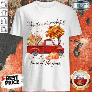 Pomeranian It's The Most Wonderful Time Of The Year Halloween Shirt