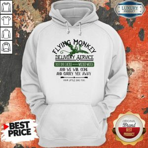 Flying Monkey Delivery Service Just One Cackle From The Wicked Witch Hoodie