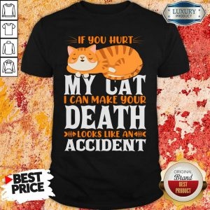 If You Hurt My Cat I Can Make Your Death Looks Like An Accident Shirt