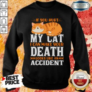 If You Hurt My Cat I Can Make Your Death Looks Like An Accident Sweatshirt