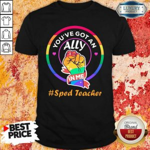 You Have Got An Ally In Me Sped Teacher Shirt