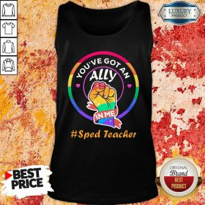 You Have Got An Ally In Me Sped Teacher Tank Top